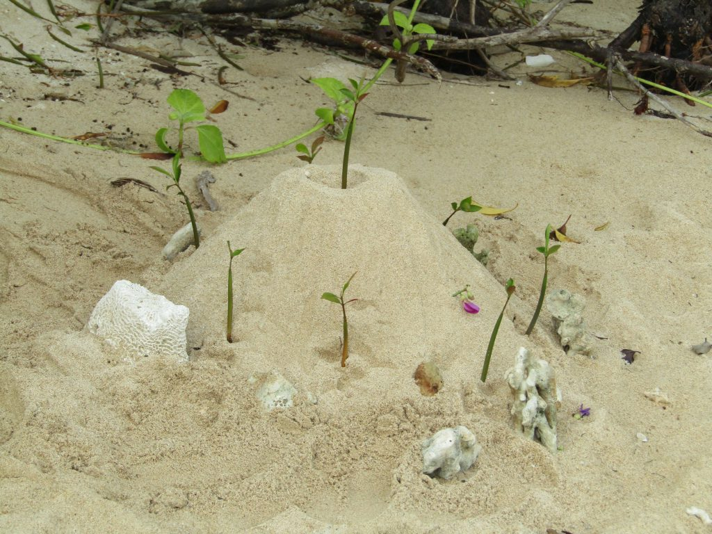 Our apprentice guide playfully created this mound of sand at the 'other ilog' in Cagbalete Island